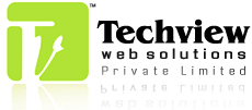 Techview Web Solutions